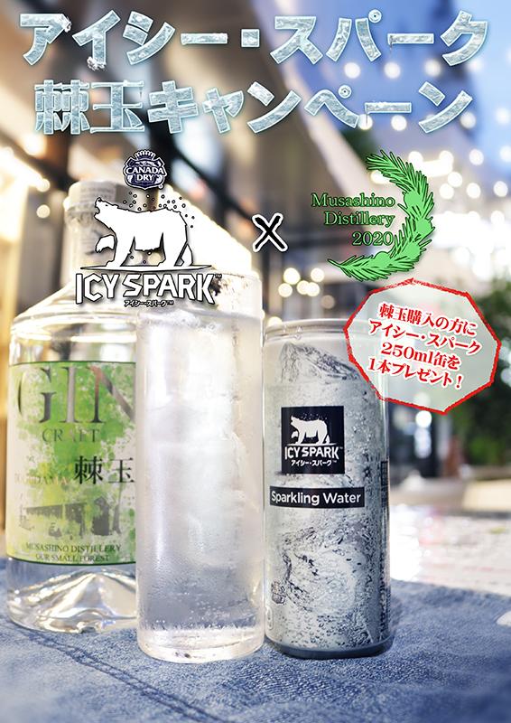 クラフトジン棘玉 700ml+アイシー・スパーク250ml缶 セット